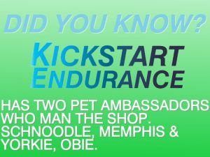 Pet Ambassadors